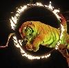 Цирки в Балахне